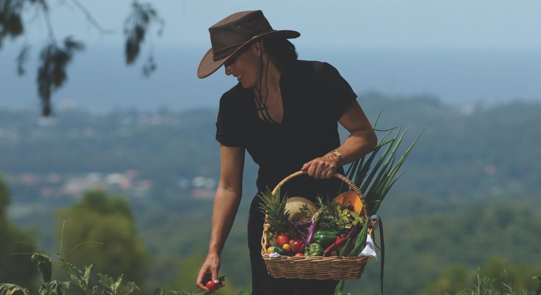Shelley in the garden harvesting organic produce